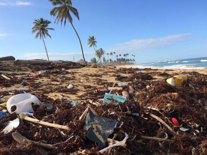 Jak zredukovat (nejen) plastovýodpad?