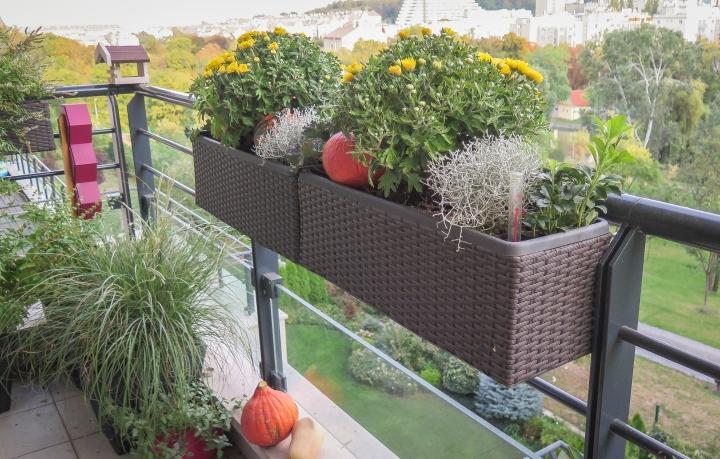 Balkonový update: září